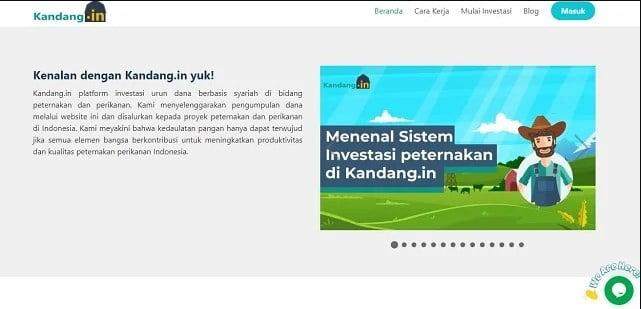 Website Ternak