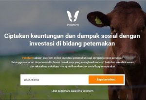 web peternakan
